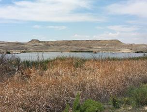 NTEC, BHP Win Award for Reclamation Project at Navajo Mine